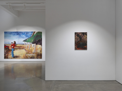 "Paulina Olowska, ""Wisteria, Mysteria, Hysteria."" Installation view, 2016. Metro Pictures, New York."