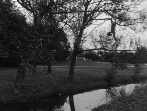 Broken fall (organic), Amsterdamse Bos, Holland, 1971