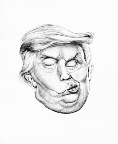 Trump Distortion #4, 2017