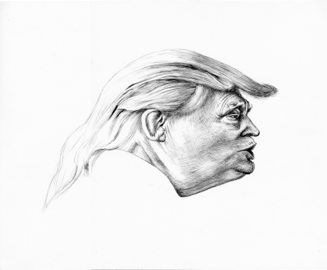 Trump Distortion #1, 2017