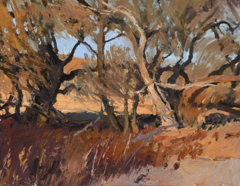 chmiel sand hills survivors oil ARIZONA