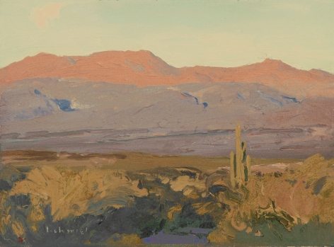 chmiel mcdowell mountain park arizona oil