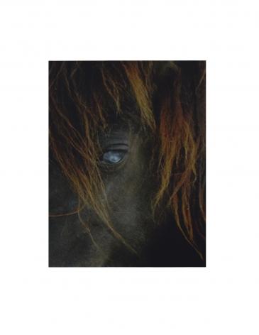 P4 1033 (gloss/color), ©2004