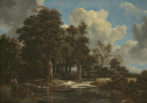 Jacob van Ruisdael Edge of a Forest with a Grainfield Kimbell Art Museum, Fort Worth Nicholas Hall Art Gallery Dealer Old Masters