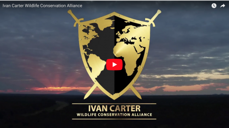 Ivan Carter Wildlife Conservation Alliance