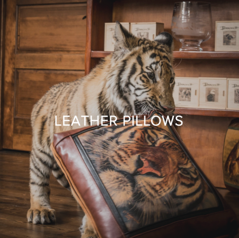 You GIVE BACK when you collect Banovich Wild Accents - SHOP WILD ACCENT PILLOWS