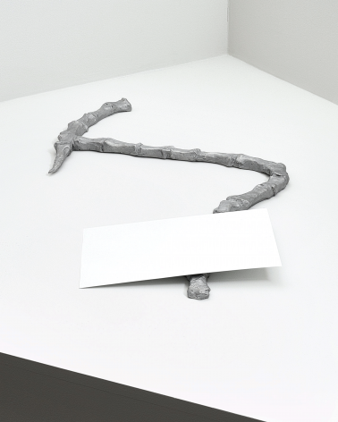 Bone and Walnut, 2016. Aluminum. Approximately 17.72 x 27.56 x 0.98 inches (45 cm x 70 cm x 2.5 cm)