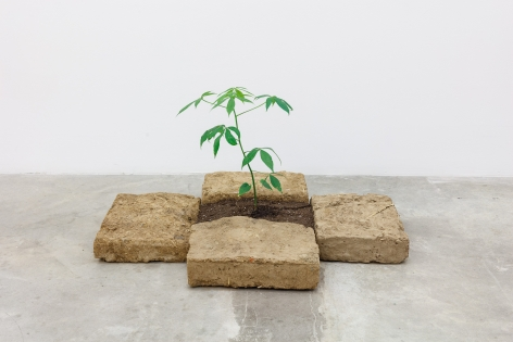 Group Show with Commonwealth and Council: Rafa Esparza and Beatriz Cortez, Portal (2018). Adobe, ceiba tree, 18 x 31 x 41 inches (45.7 x 78.7 x 104.1)