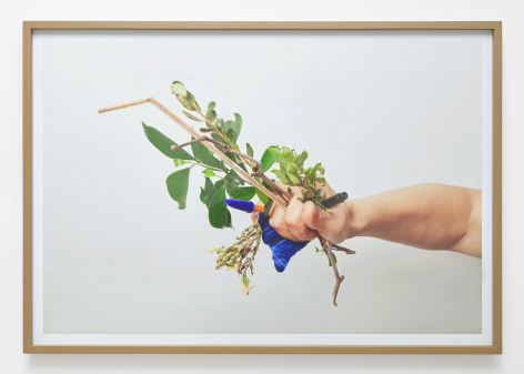 Evidence, 2014. Pigment print. 22.05 x 33.46 inches (56 x 85 cm)
