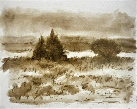 Pheasant Quill Landscape