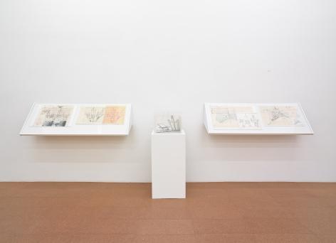 Regina Silveira, Installation view, Alexander Gray Associates, 2011