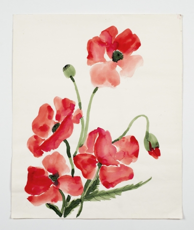 "Poppies, from the ""Florals"" series [057], c. 1983, Watercolor On Paper"