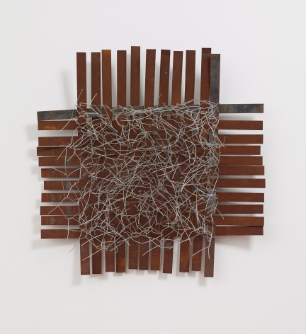 Iron No. 3, 2013, Iron and steel wire