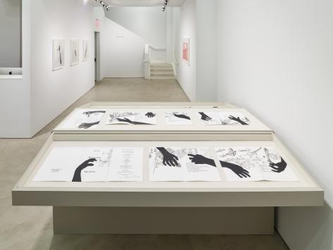 Regina Silveira, installation view, Alexander Gray Associates, 2016