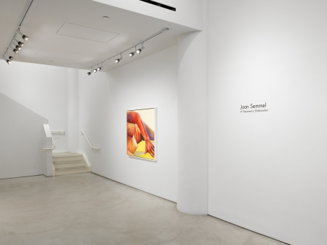 Joan Semmel:A Necessary Elaboration