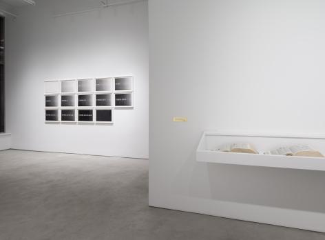 Luis Camnitzer: Short Stories, installation view, Alexander Gray Associates (2017)