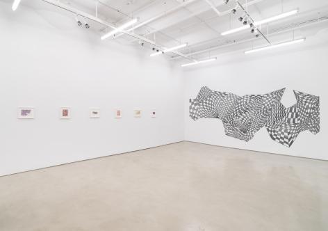 Teresa Burga, Installation view