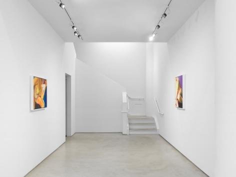Joan Semmel: A Balancing Act