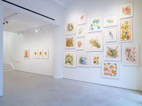 Vera Paints a Summer Bouquet, installation view, Alexander Gray Associates, 2014