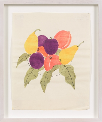 Untitled, from the Fruits series, n.d., Watercolor and ink on paper