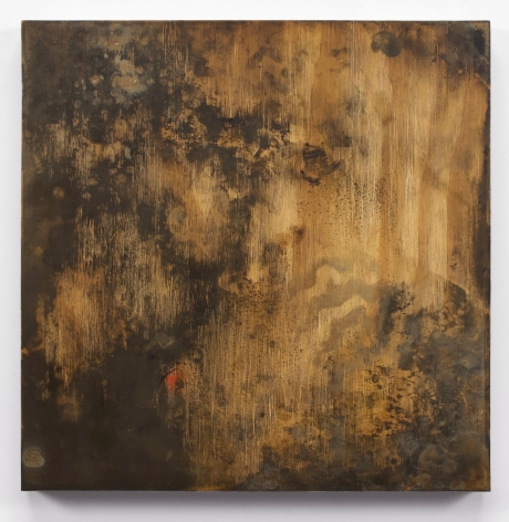 """Hyperreal oil painting titled """"Ply 2"""" by Anthony Adcock"""