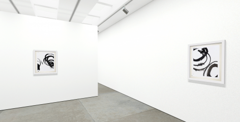 "Christopher Rico ""Lotan"" online installation"