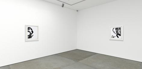 "Christopher Rico ""Lotan"" online exhibition installation"