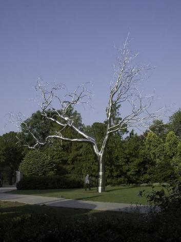 ROXY PAINE Graft, 2009