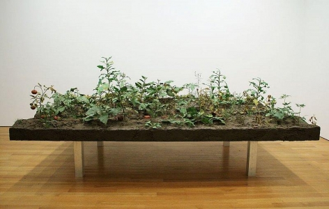 ROXY PAINE Weed Choked Garden, 2005