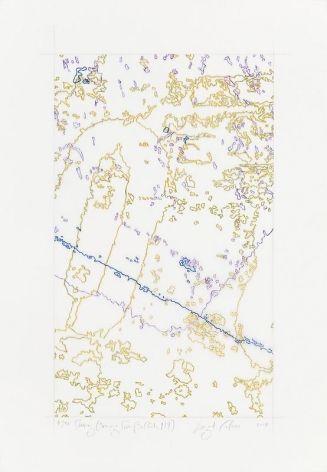 """INGRID CALAME英格丽•卡兰 #298 Drawing (Tracings from Buffalo, NY) 绘ç""""»298号(从纽约水牛城得到描图),2008"""