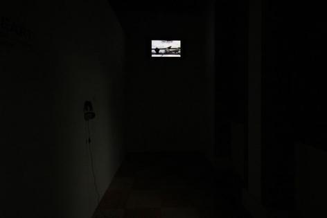 CHENG RAN 程然, Rock Dove 野鸽, Installation view, James Cohan Gallery, Shanghai, 2010