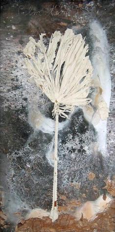 ANSELM KIEFER Palmstern, 2008