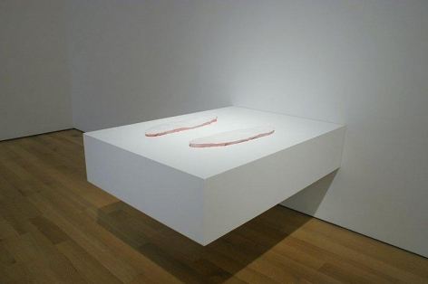 ERICK SWENSON Killer Whale (White Parts), 2003