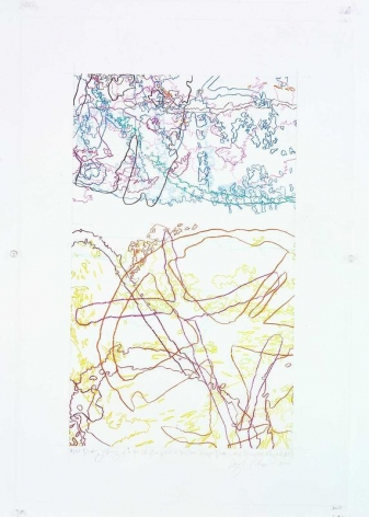 """INGRID CALAME英格丽•卡兰 #248 Drawing (Tracings up to the L.A. River placed in the Clark Telescope Dome, Lowell Observatory, Flagstaff, AZ) 绘ç""""»248号(亚利æ¡'é'£å·žï¼Œå¼—拉格斯å¡""""夫,洛åŽ""""å°""""天文台,克拉克望远è§'测台,往洛杉矶河追踪), 2006"""