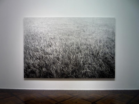 SHI ZHIYING: The Infinite Lawn