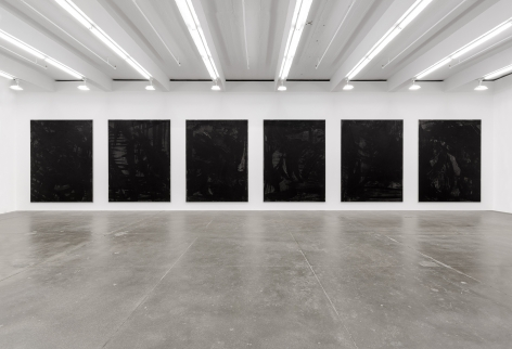 Somewhere Some Pictures Sometimes, Andrew Kreps Gallery, New York