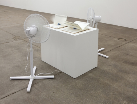 Jamie IsensteinEye Books, 2014Two oscillating fans, two books of watercolorsDimensions variable