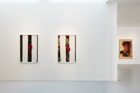 Innocence II, Gagosian Gallery, San FranciscoSeptember 21 - October 28, 2017