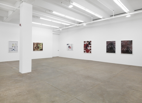 Sacrifice Your Body, Andrew Kreps Gallery, New YorkFebruary 22 - March 29, 2014