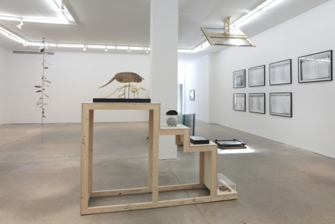 If You Leave Me I'm Not Following,Andrew Kreps Gallery, New York, February 18 - March 24, 2012