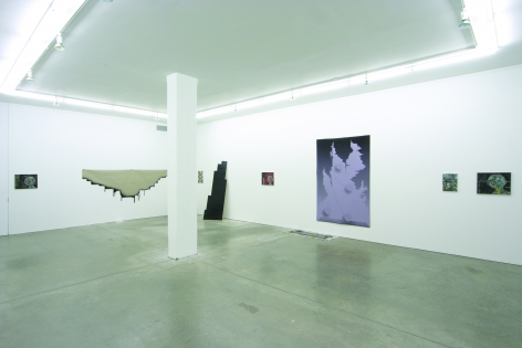 Andrew Kreps Gallery, New York, June 23 - July 20, 2007