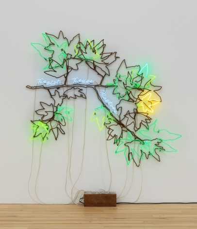 Andrea Bowers, Ecofeminist Sycamore Branches: Resist Reuse Restore, 2019