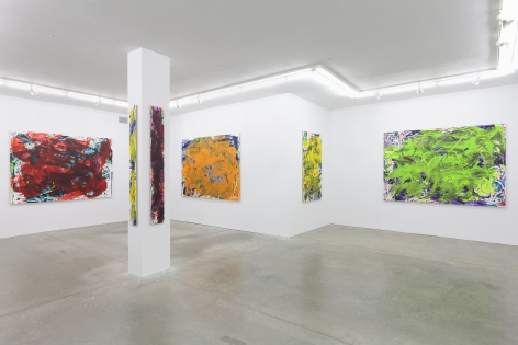 Sometimes Some Pictures Somewhere, Andrew Kreps Gallery, New York