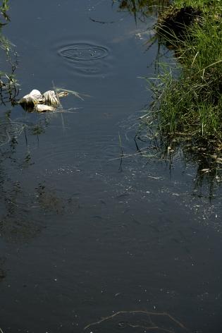 Roe Ethridge Canal, 2011