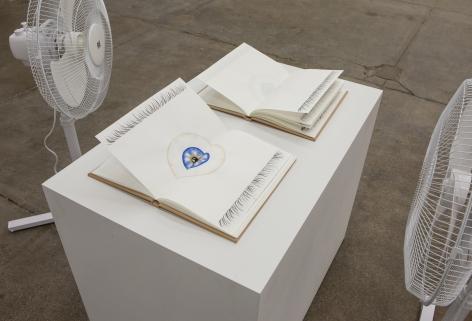 Jamie Isenstein Eye Books, 2014 (detail)