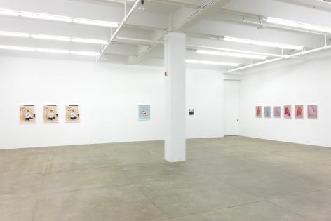 Andrew Kreps Gallery, New Yorkâ€‹September 12th - November 2nd, 2013