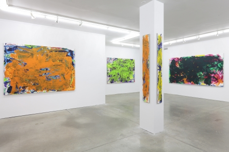 Sometimes Some Pictures Somewhere, Andrew Kreps Gallery