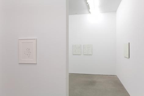 Robert Macaire Chromachromes,Andrew Kreps Gallery, New York, May 2 - July 4, 2009