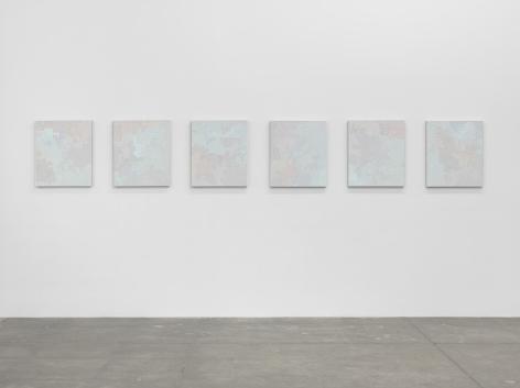 Birdwings and Chambered Shells, Andrew Kreps Gallery, New York,