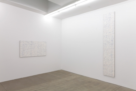 Robert Macaire Chromachromes, Andrew Kreps Gallery, New York, May 2 - July 4, 2009